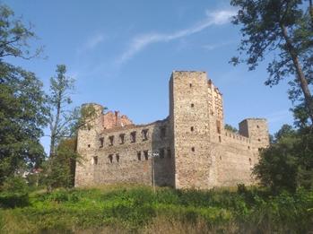 Zamki Opoczna i Drzewicy